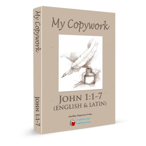 Copywork 3-d book JOHN