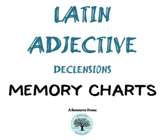 Latin Adjective Charts