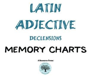 Latin Adjective Charts - Wisdom And Righteousness